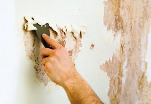 Во время ремонта часто возникает вопрос как удалить старую краску со стены