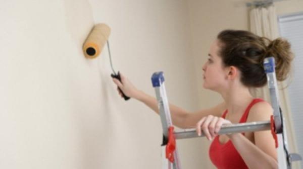 Грунтовка стен под обои предотвратит появление грибка и плесени