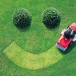 Важные инструменты и задачи, связанные с правильным уходом за газоном